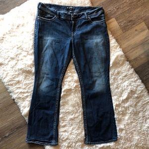 Silver Jeans Co. Plus Size Suki Bootcut